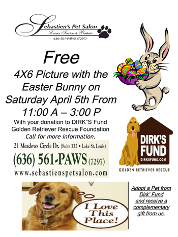 Free Picture with the Easter bunny @ Sebastian's Pet Salon | Wildwood | Missouri | United States